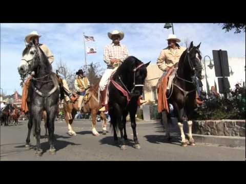 Desfile de caballos baile de caballos S R epsdo2