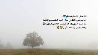 تلاوه نديه وهادئه للقارئ حماد عزي ❤️