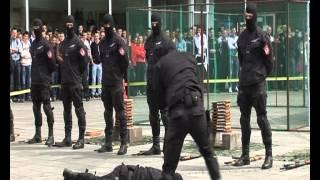 SJP - Vježba na Trgu