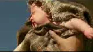 فيلم سيد الوحوش  The Beastmaster مترجم   كامل