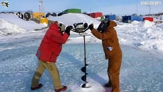 7 Fakta Mengejutkan Antartika !!! Tempat Terdingin Di Dunia