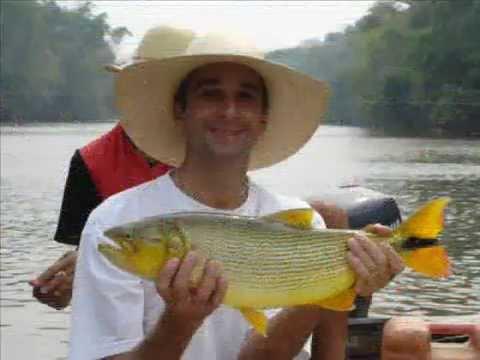 Pescaria de Dourados