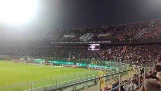 Palermo-Verona formazione e coreografia Stadio Renzo Barbera