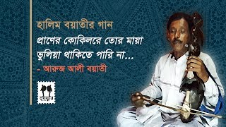 Pran Kokila Re Tor Maya || Halim Ali Boyati Song || Aroj Ali Boyati || Jhenaidah