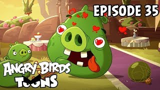 Angry Birds Toons | Love is in the Air - S1 Ep35