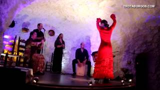 Spain Tablao Flamenco  タブラオ フラメンコ