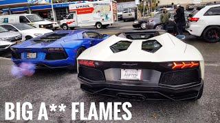 Flame Throwing Lamborghini Aventador and Free Turkey