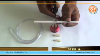 Make stethoscope & check your heart beat | School Science Projects | Butterfly Fields