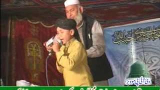 kashif ali qadri(hafizabad).DAT