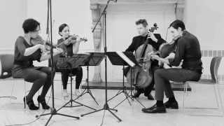 """Philip Glass - String Quartet No. 3 """"Mishima"""" , VI"""