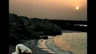 Sar mera jhuka hai tere dar par mere Allah..  Vocalist: Syed Ather Ali..