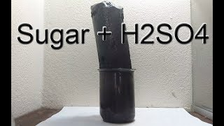 H2SO4 + Sugar in Full HD 60fps - Dehydration of Sugar with Sulfuric Acid