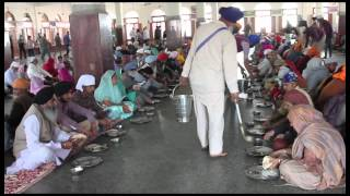 Short Documentary on Golden Temple Amritsar Kitchen | Darbar Sahib Kitchen