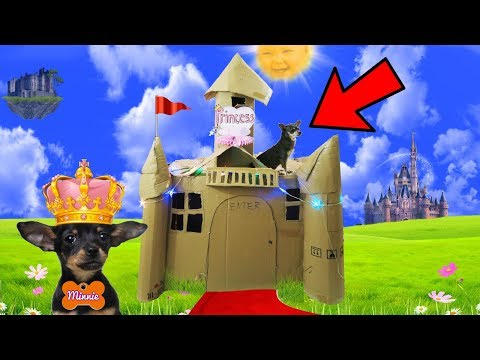 ULTIMATE BOX FORT PUPPY DOG PRINCESS CASTLE ON MINNIE THE CHIHUAHUA!!