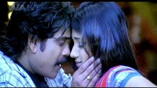 Main Hoon King - मैं हूं किंग | Full Dubbed Bhojpuri Movie 2015 | Nagarjuna, Trisha | HD