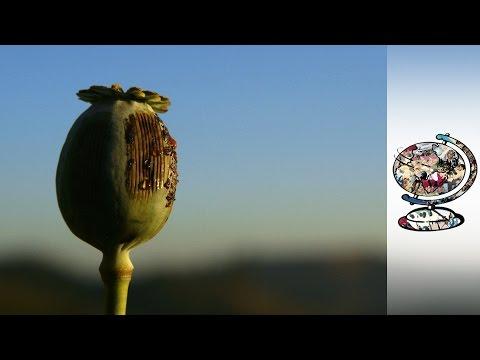 Xxx Mp4 Inside Myanmar S Soaring Heroin Trade 3gp Sex