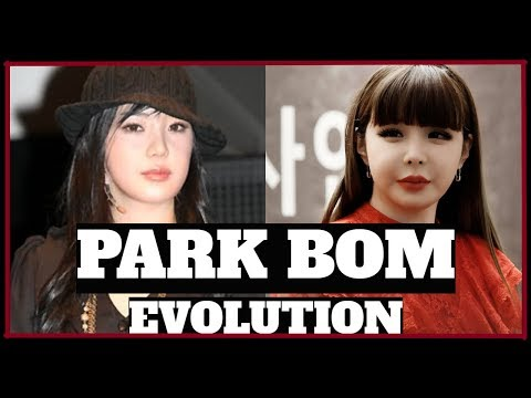 PARK BOM EVOLUTION 박봄 진화
