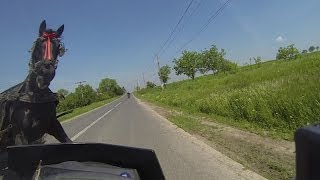 Sunday 11.05 2014 Near miss accident (motorcycle girl vs horse)