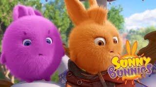 Sunny Bunnies - SUNNY BUNNY BURGER | Cartoons For Children | Funny Cartoons For Children