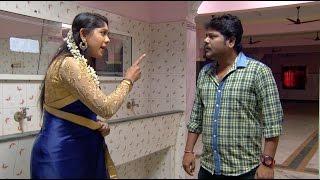 Priyamanaval Episode 611,  19/01/17