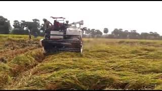 Yanmar harvester sbp(1)