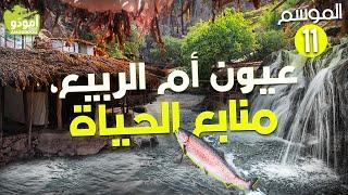 ✅ Amouddou TV 162  أمودّو / عيون أم الربيع، منابع الحياة