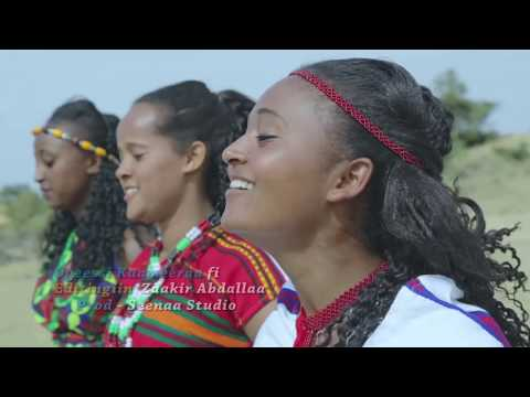 Xxx Mp4 Ethiopian Music Adaanech Taamanaa Gadda New Ethiopian Oromo Music 2019 Official Video 3gp Sex