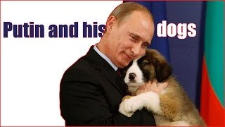 Putin and his dogs