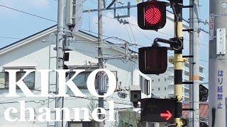 踏切動画 JR 普通電車 通過集 学研都市線とウイスキー railroad crossing japan