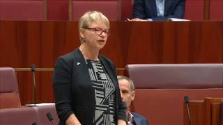 Janet Rice on safeguards during the marriage equality postal vote