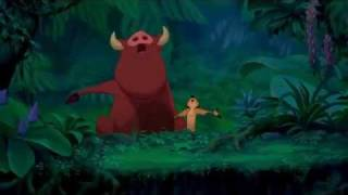 The Lion King: Can You Feel the Love Tonight? HD