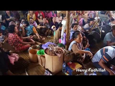 Xxx Mp4 Aruh Baharin Dayak Halong Balangan Kalimantan Selatan 3gp Sex
