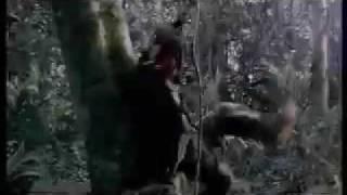Vengeance Trailer (TADFF 2006)
