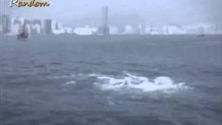 earthquake japan 2011 weird ocean in japan video