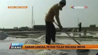 Garam Langka, Petani Tolak Wacana Impor