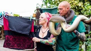 Reptile Lovers Live With 80 Snakes