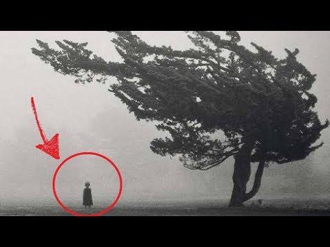Top 10 Creepy Photos Found Online