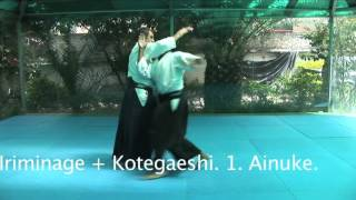 Yokomenuchi - Iriminage und Kotegaeshi - Maeashi Irimi, Jodan Kuzushi -Ainuke