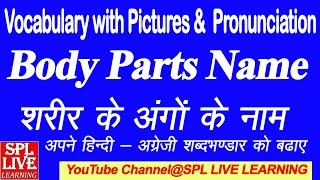 English Vocabulary - Body parts name with picture and Hindi meaning - शरीर के अंगो के नाम