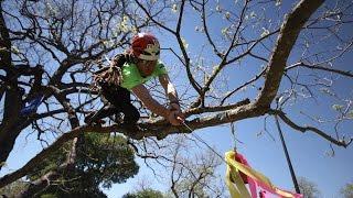 2016 World Tree Climbing Championship Final; James Kilpatrick ITCC Masters