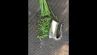 Blacksmithing: Forging an herb chopper from an old file