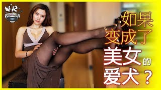 [3DVR] 如果变成了美女主人的爱犬 / 미녀의 강아지가 된다면? / I want to be a beautiful woman's puppy.