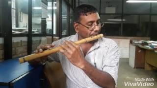 মদু কই কই বিষ হাওয়লা, বাশি সুর