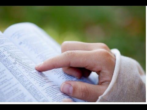Xxx Mp4 4 Die BIBEL Täglich Und Richtig Studieren 3gp Sex