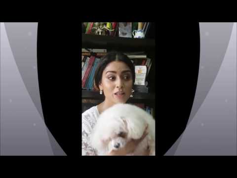 NRIDesiCharms.com Ladies Night with Shriya Saran