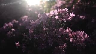 Christian Löffler - Haul (feat. Mohna)
