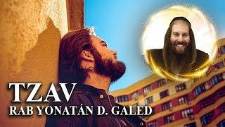 Movimiento, Crecimiento y Conocimiento – TZAV   Rab Yonatán D. Galed