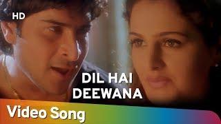 Dil Hai Deewana   Tada (2003)   Sharad Kapoor   Monica Bedi   Hindi Romantic Song