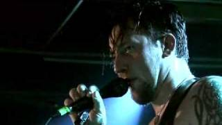 VOLBEAT - Devil Or The Blue Cat's Song (live in Berlin 2007)