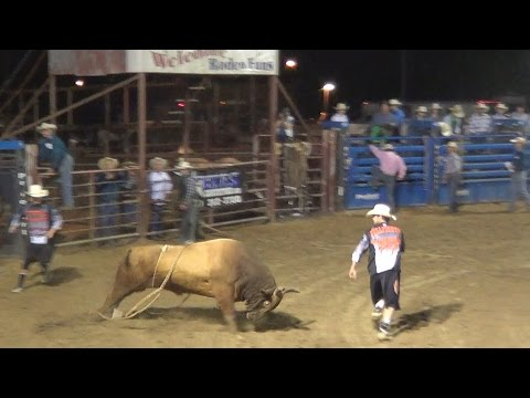 Xxx Mp4 Rodeo Bull Riding Watch Bull Fighters Chased By Mad Bulls 3gp Sex